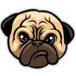 Pugthemes's picture